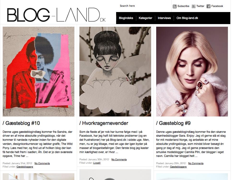 Blog-land.dk The Wild Pony Gæsteblog